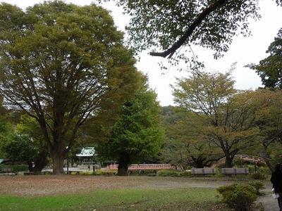 s-DSCN4649.jpg