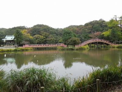 s-DSCN4651.jpg