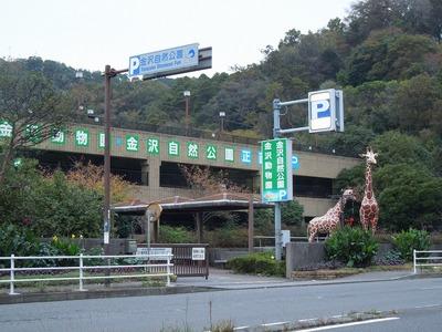 s-DSCN4662.jpg