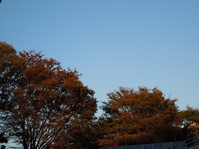 s-DSCN4694.jpg